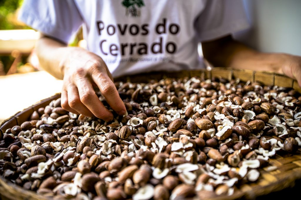 046. Buriti de Goiás_© Bento Viana_ISPN_VF_3155